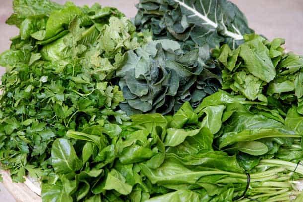 Vegetais verdes escuros ricos em ácido fólico ou vitamina B9