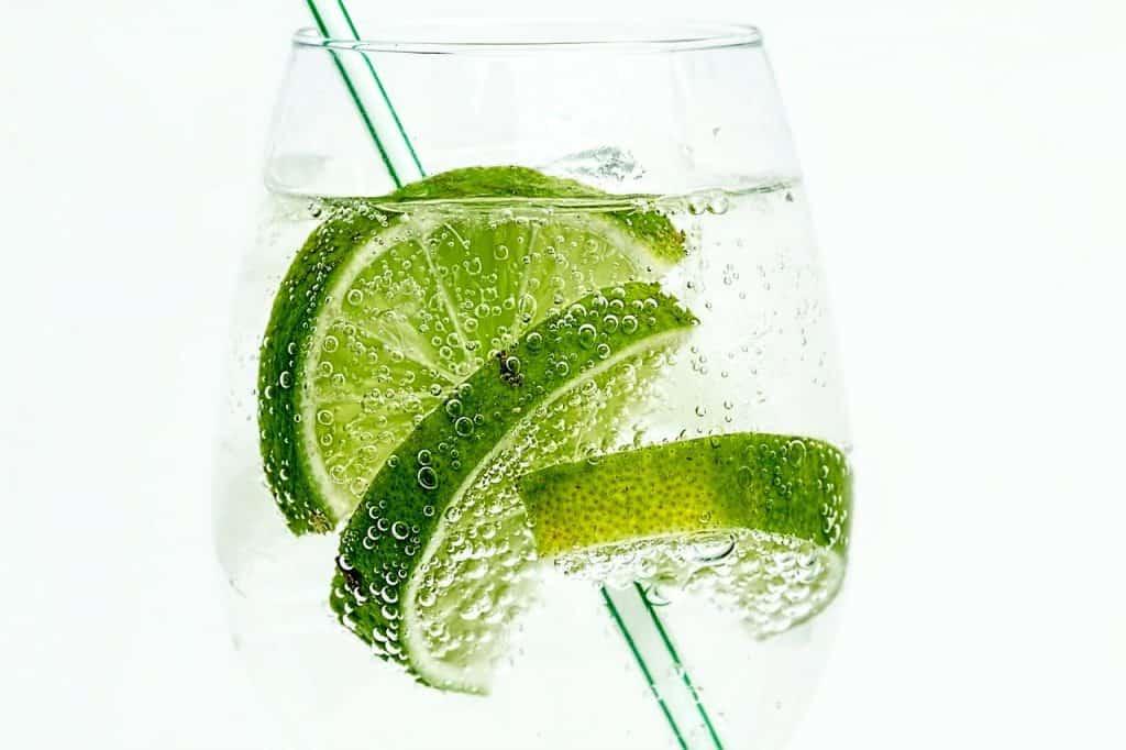 Drinks com gin: passo a passo para fazer 16 receitas fáceis