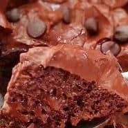 Receita de Bolo de caneca de chocolate low carb